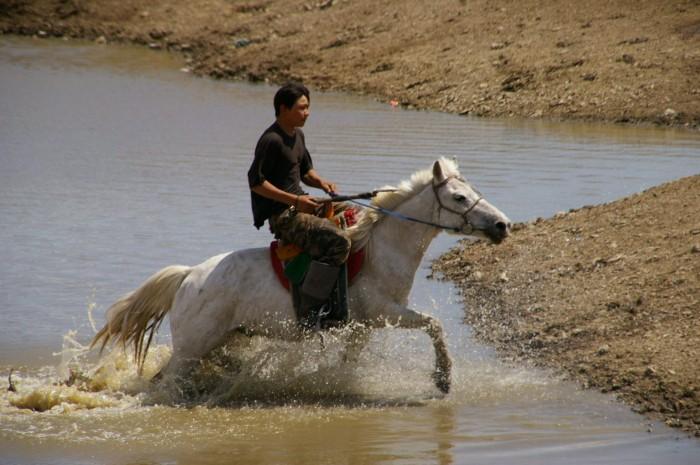 Mongolie 153.JPG