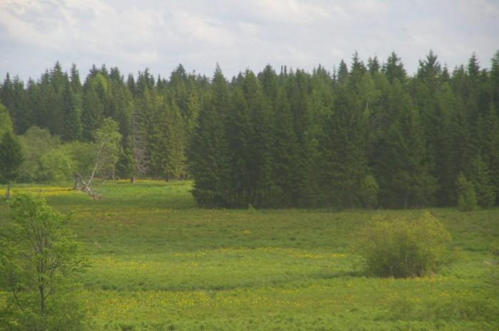 Russie 603.JPG
