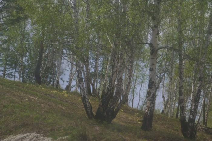 Russie 793.JPG
